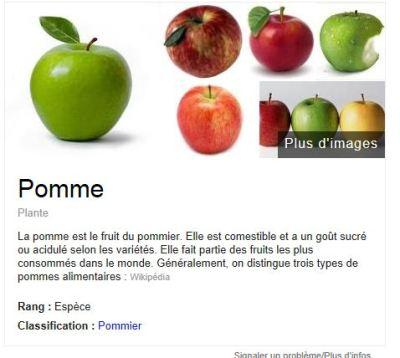 google-fonctionnalité nutrition